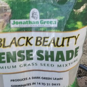 From Seed to Green! Fescue/Rye/Bluegrass  episode 1