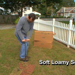 Planting Amazoy Zoysia Grass Plugs