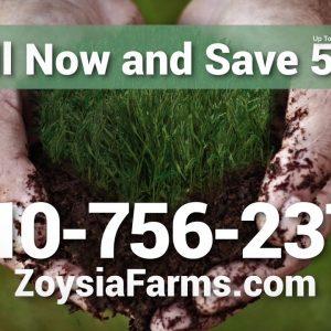 ZOYSIA FARMS - ZOYSIA GRASS THE ONE TIME LAWN SOLUTION